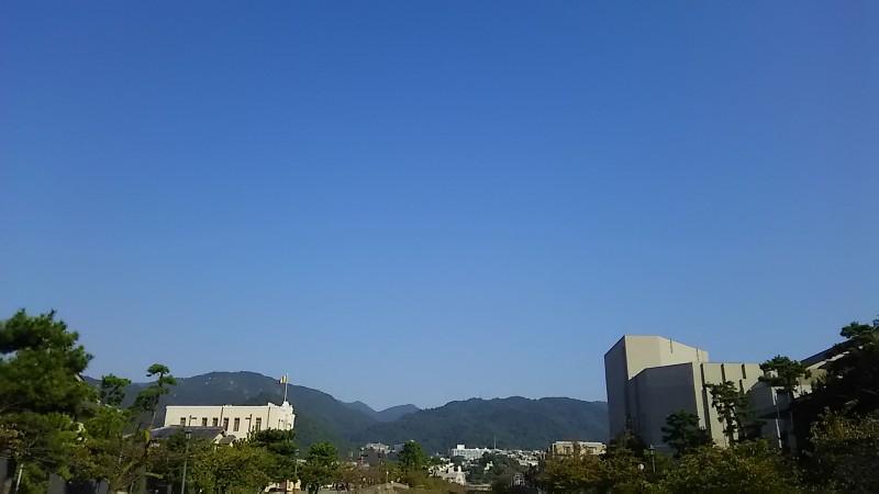 DSC_0648