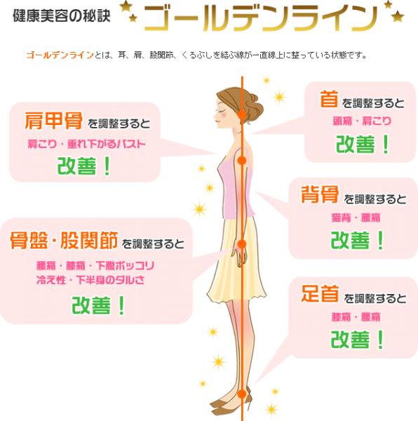 sisei_goldline