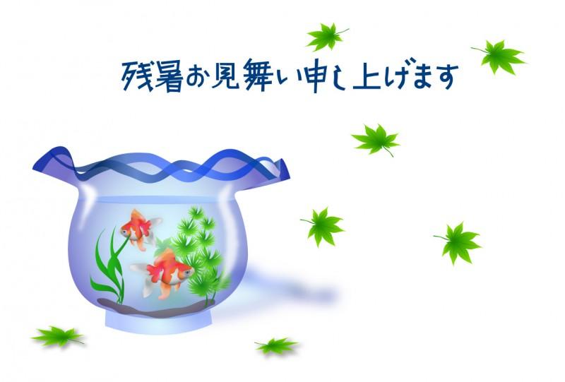 ten_natu_kingyo11