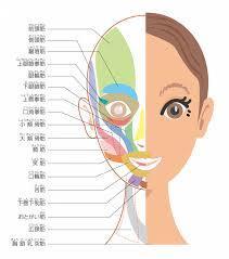 顔のエクササイズで頭痛予防!